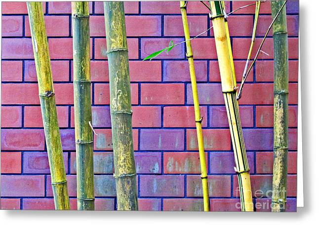 Greeting Card featuring the photograph Bamboo And Brick by Ethna Gillespie