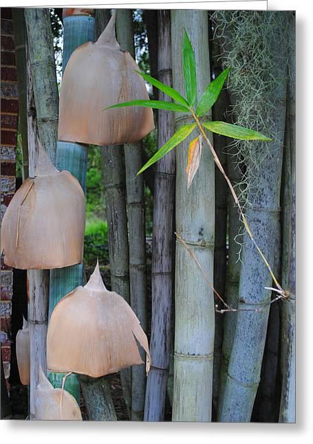 Bamboo Bells Greeting Card