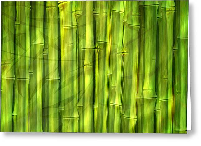 Bamboo Dream Greeting Card