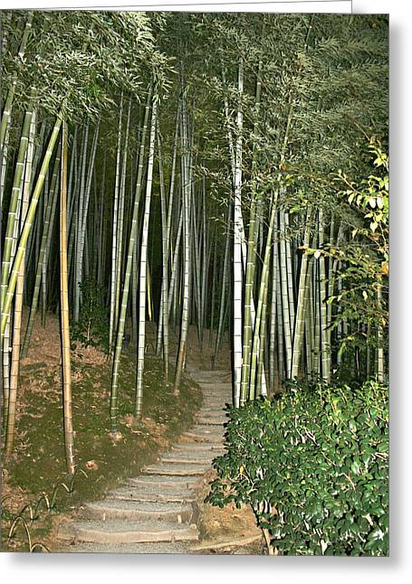 Bamboo Forest Pathway Greeting Card