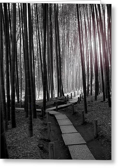 Bamboo Grove At Dusk Greeting Card by Larry Knipfing