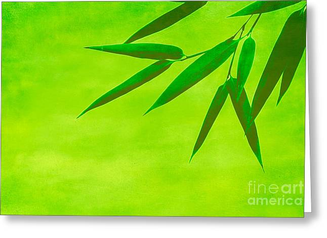 Bamboo Leaves Greeting Card by Hannes Cmarits