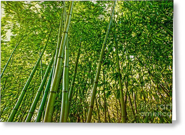 Bamboo Greeting Card by Nur Roy