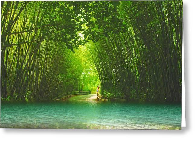 bamboo path to  Blue Lagoon  Greeting Card