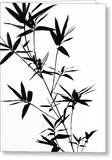 Bamboo Shadows Greeting Card by Jenny Rainbow