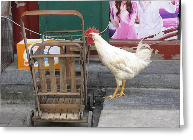 Bamboo Shopping Cart Greeting Card by Alfred Ng