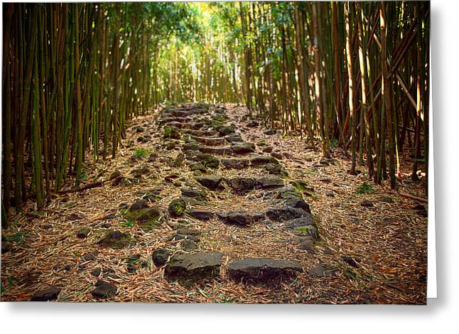 Bamboo Trail Greeting Card by Jen Morrison