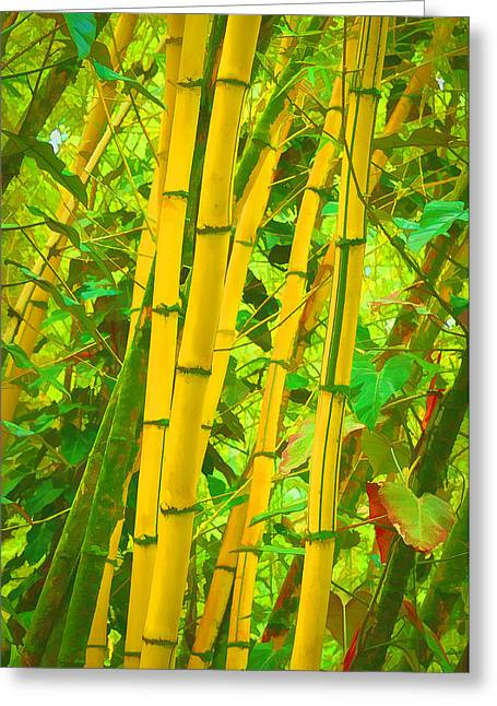 Bamboo Trees Greeting Card by Art Brown