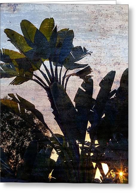 Banana Palms Greeting Card by Gilbert Artiaga