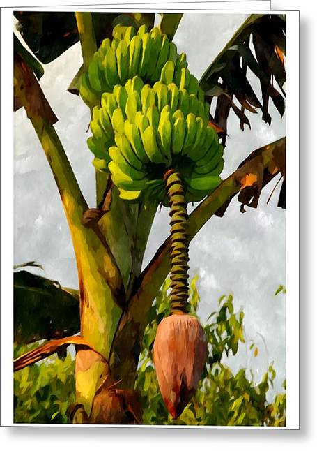 Banana Trees With Fruits And Flower In Lush Tropical Garden Greeting Card by Lanjee Chee