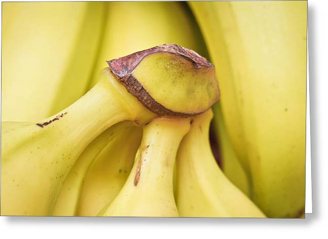 Bananas Greeting Card by Tom Gowanlock