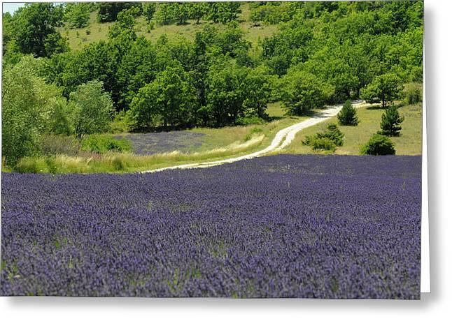 Banon, Provence, France Greeting Card by Sergio Pitamitz
