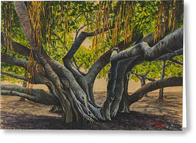 Banyan Tree Maui Greeting Card