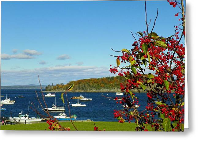 Greeting Card featuring the photograph Bar Harbor by Gene Cyr