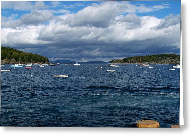 Greeting Card featuring the photograph Bar Harbor Me by Gene Cyr