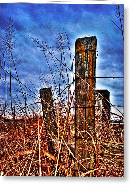 Barb Wire Fences Greeting Card