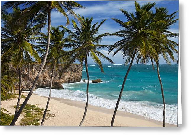 Greeting Card featuring the photograph Barbados Beach by Brian Jannsen