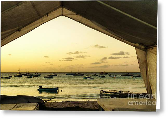 Greeting Card featuring the photograph Barbados Fishing Boats In Oistens by Polly Peacock