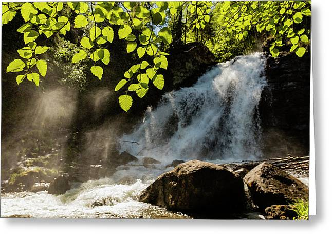 Barbara Falls On The South Fork Greeting Card by Ray Bulson