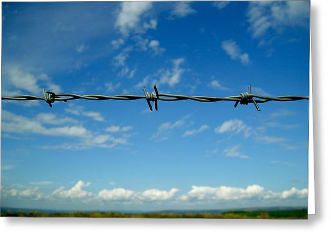Barbed Sky Greeting Card by Nina Ficur Feenan