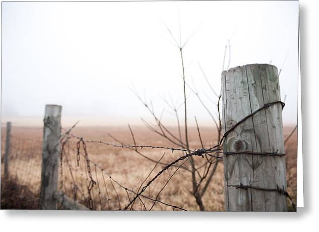 Barbed Wire Fence In The Fog Greeting Card