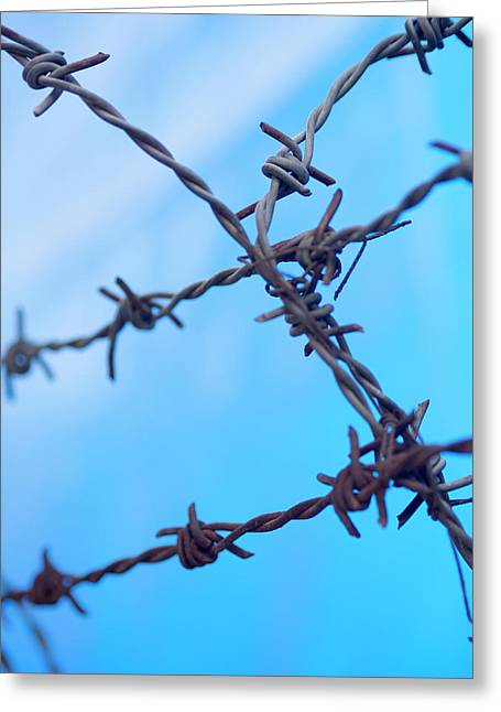 Barbed Wire Sticks Out Against The Blue Greeting Card by David H. Wells