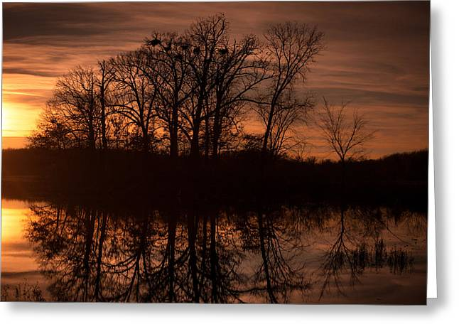 Greeting Card featuring the photograph Bare Beauty by Jason Naudi Photography