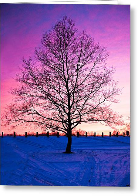 Bare Beauty Greeting Card