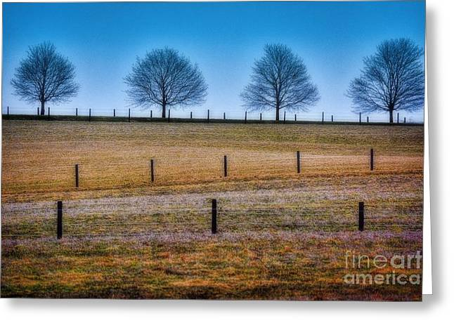 Bare Trees And Fence Posts Greeting Card by Henry Kowalski