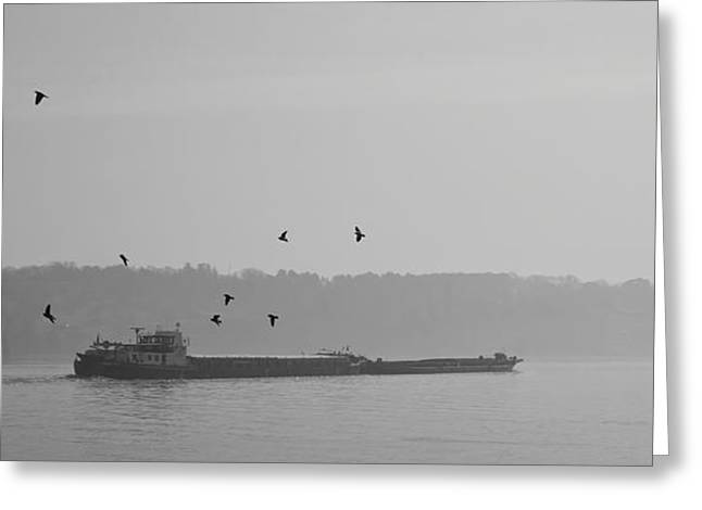 Barges Sail Birds Fly Greeting Card