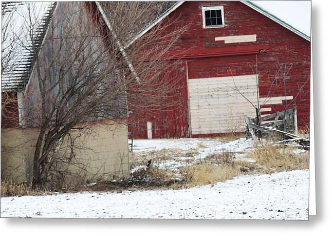 Barn 36 Greeting Card by Todd Sherlock