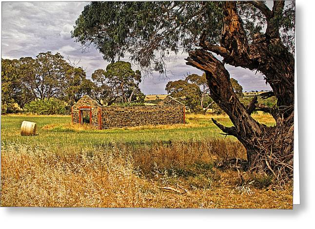 Barn And Bale In Hindmarsh Vale Greeting Card by Tony Crehan