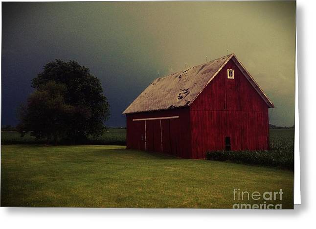 Barn And Tree Greeting Card by Tim Good