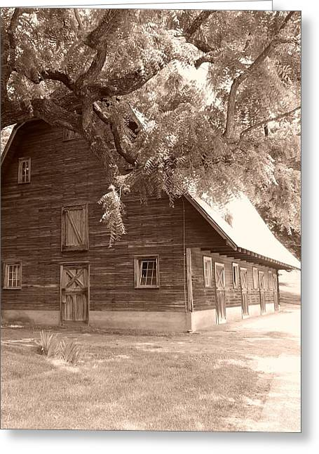 Barn Greeting Card by Andrew Johnson