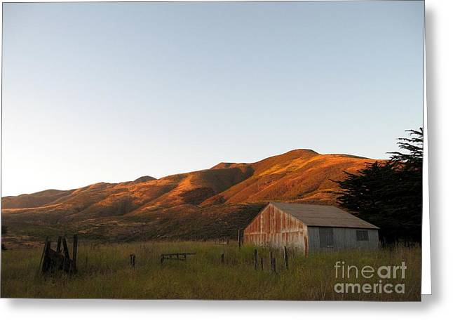 Barn At Garrapata State Park Greeting Card