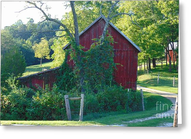 Barn At Piney River Greeting Card
