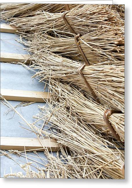 Barn Being Rethatched In Dorset Greeting Card by Ashley Cooper
