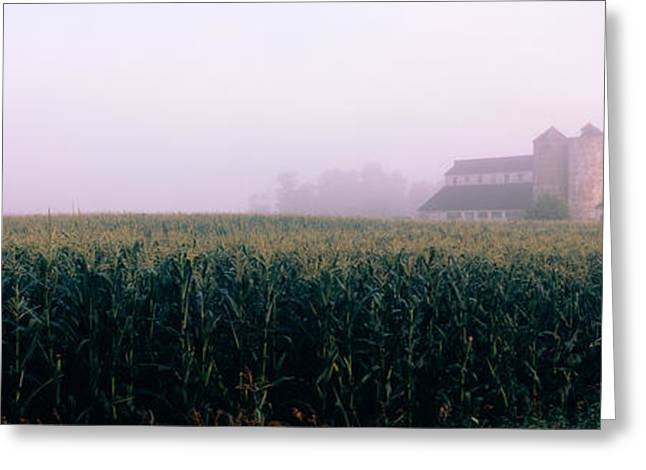 Barn In A Field, Illinois, Usa Greeting Card