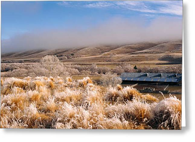 Barn In A Field, Morven Hills Station Greeting Card by Panoramic Images