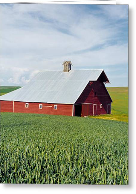 Barn In A Wheat Field, Washington Greeting Card by Panoramic Images