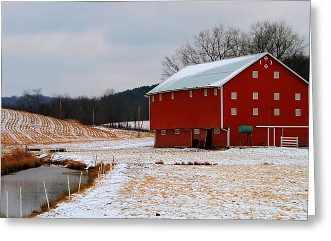 Barn In Berlin Ohio Greeting Card by Dan Sproul