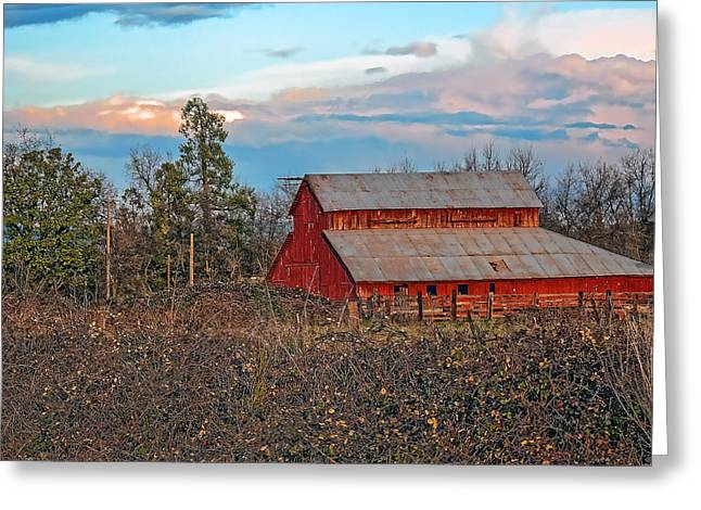 Barn In The Berry Bushes Greeting Card