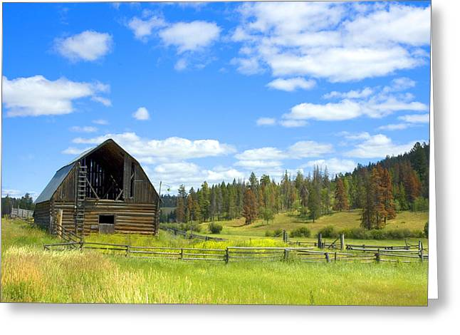 Barn Greeting Card by Michele Wright