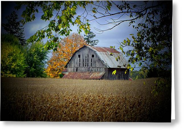 Barn Near Wilmot Greeting Card