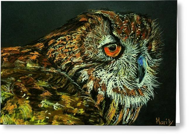 Barn Owl Greeting Card by Marily Valkijainen