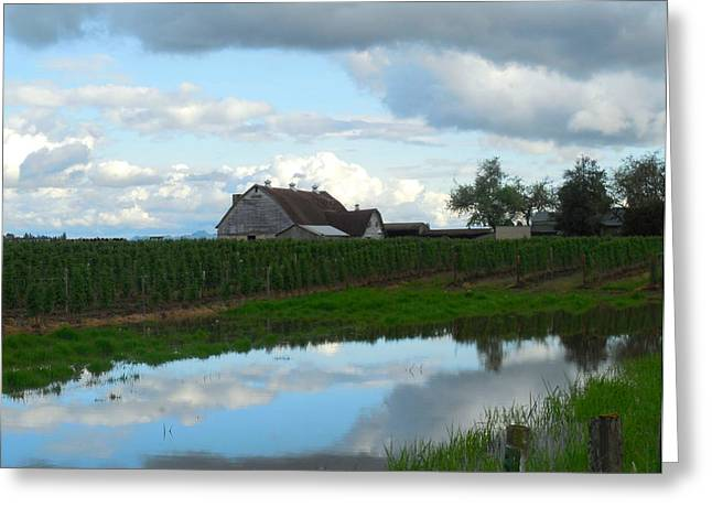 Barn Reflected In Pond  Greeting Card