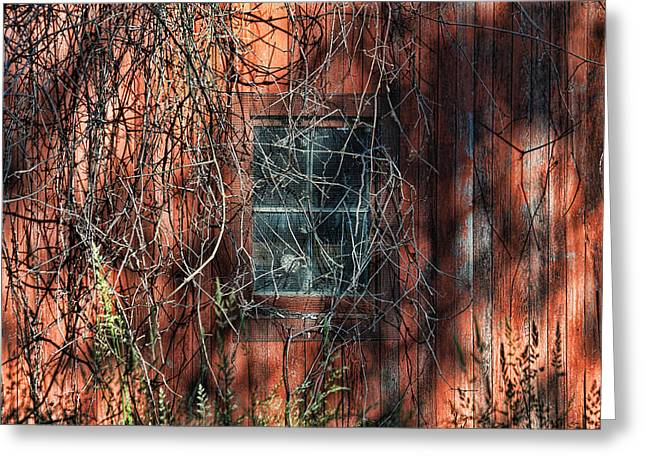 Greeting Card featuring the photograph Barn Side by David Armstrong