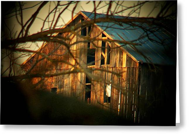 Barn Thru The Trees Greeting Card
