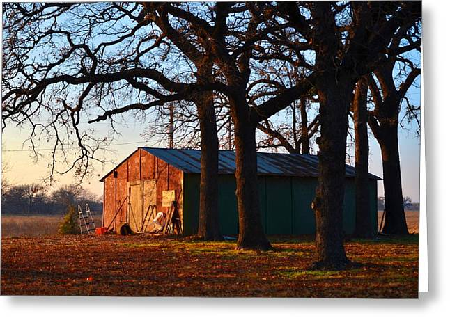 Barn Under Oak Trees Greeting Card
