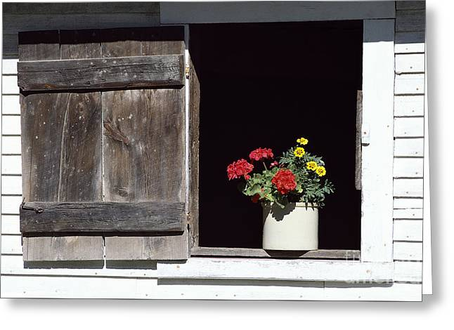 Greeting Card featuring the photograph Barn Window Flowers by Alan L Graham